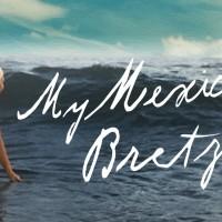 Screening + talk: My Mexican bretzel